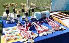 Кубок Донецької області з  легкої атлетики